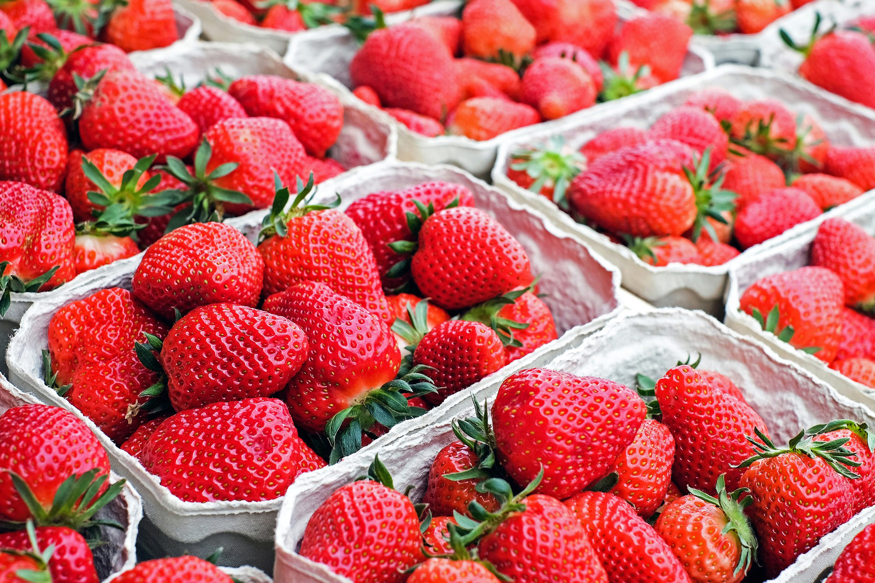 Strawberries-CCP-PackagingComestible-GRAN